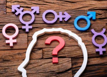 Diversidad de Género
